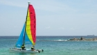 catamaran-sail