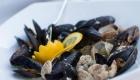 mussels-shells