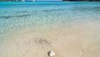 Image: 0104213074, License: Rights managed, Beach Saharun, island Dugi otok, Croatia., Property Release: No or not aplicable, Model Release: No or not aplicable, Credit line: Profimedia.com, Alamy